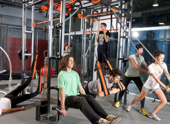 Functional Training System – Purmotion